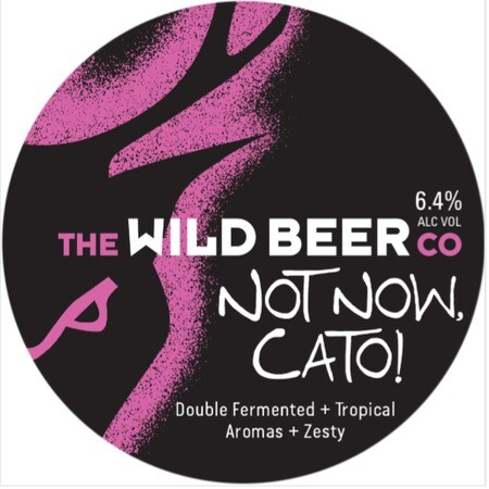 Wild Beer Co Not Now Cato! – Buy Beer online on EeBriaTrade.com