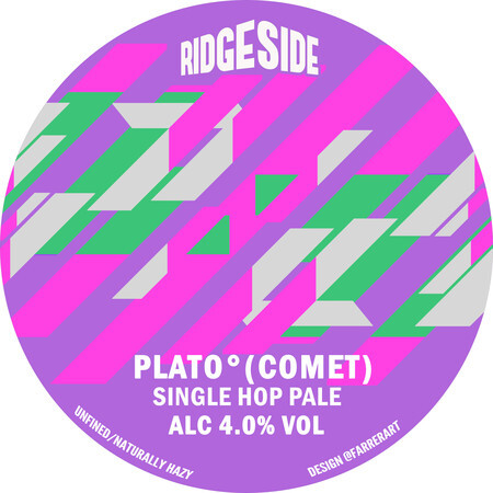 Ridgeside Brewing Co PLATO (COMET) – Buy Beer online on EeBriaTrade.com