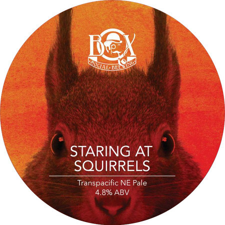 Box Social Brewing Staring At Squirrels – Buy Beer online on EeBriaTrade.com