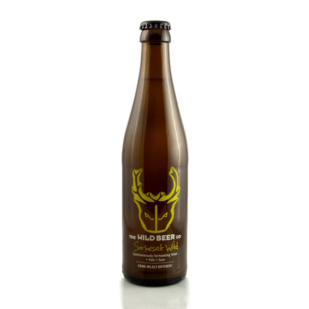 Wild Beer Co Somerset Wild – Buy Beer online on EeBriaTrade.com