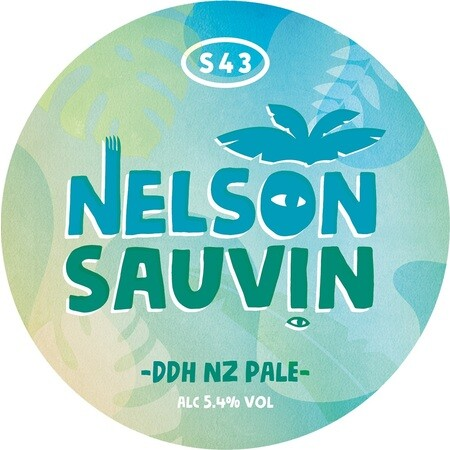 S43 Brewery Nelson Sauvin (DDH NZ Pale) – Buy Beer online on EeBriaTrade.com