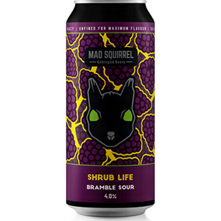 Mad Squirrel Shrub Life  – Buy Beer online on EeBriaTrade.com