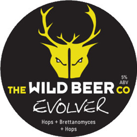 Wild Beer Co Evolver IPA – Buy Beer online on EeBriaTrade.com