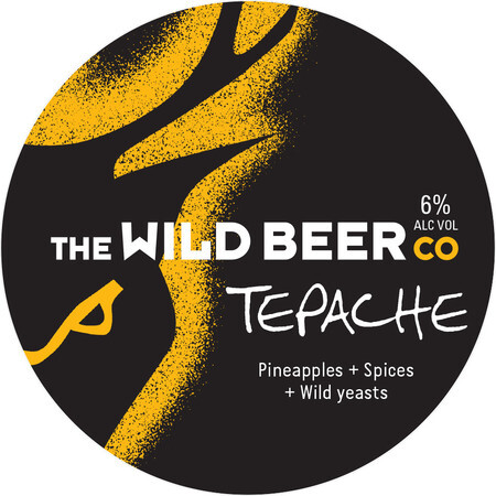 Wild Beer Co Tepache – Buy Beer online on EeBriaTrade.com