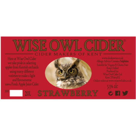 Wise Owl Cider Strawberry  – Buy Cider online on EeBriaTrade.com