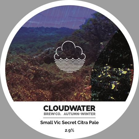 Cloudwater Brew Co Small Vic Secret Citra Pale (G.402) – Buy Beer online on EeBriaTrade.com