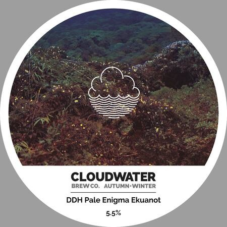 Cloudwater Brew Co DDH Pale Enigma Ekuanot (G.404) – Buy Beer online on EeBriaTrade.com