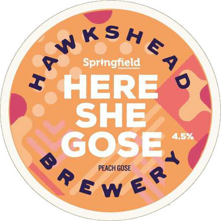 Hawkshead Brewery Here She Gose – Buy Beer online on EeBriaTrade.com